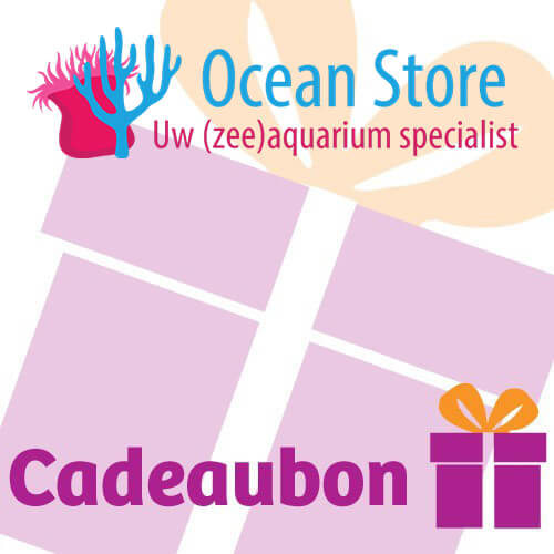 Ocean Store Cadeaubon