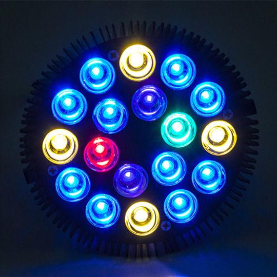 ASAQUA PAR38 54W LED layout