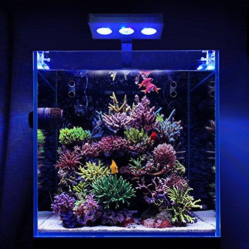 asaqua no5 nano led verlichting prachtig voor nano aquaria