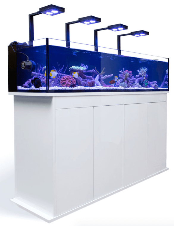 Aqua illumination Hydra 26 HD boven aquarium met beugels