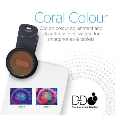 D&D Mobile Phone Coral Photo Lens