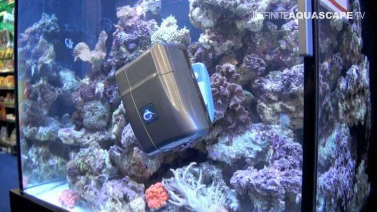 Robosnail-volautomatische-ruitreiniger-aquarium-2.jpg : Robosnail volautomatische ruitreiniger voor aquarium