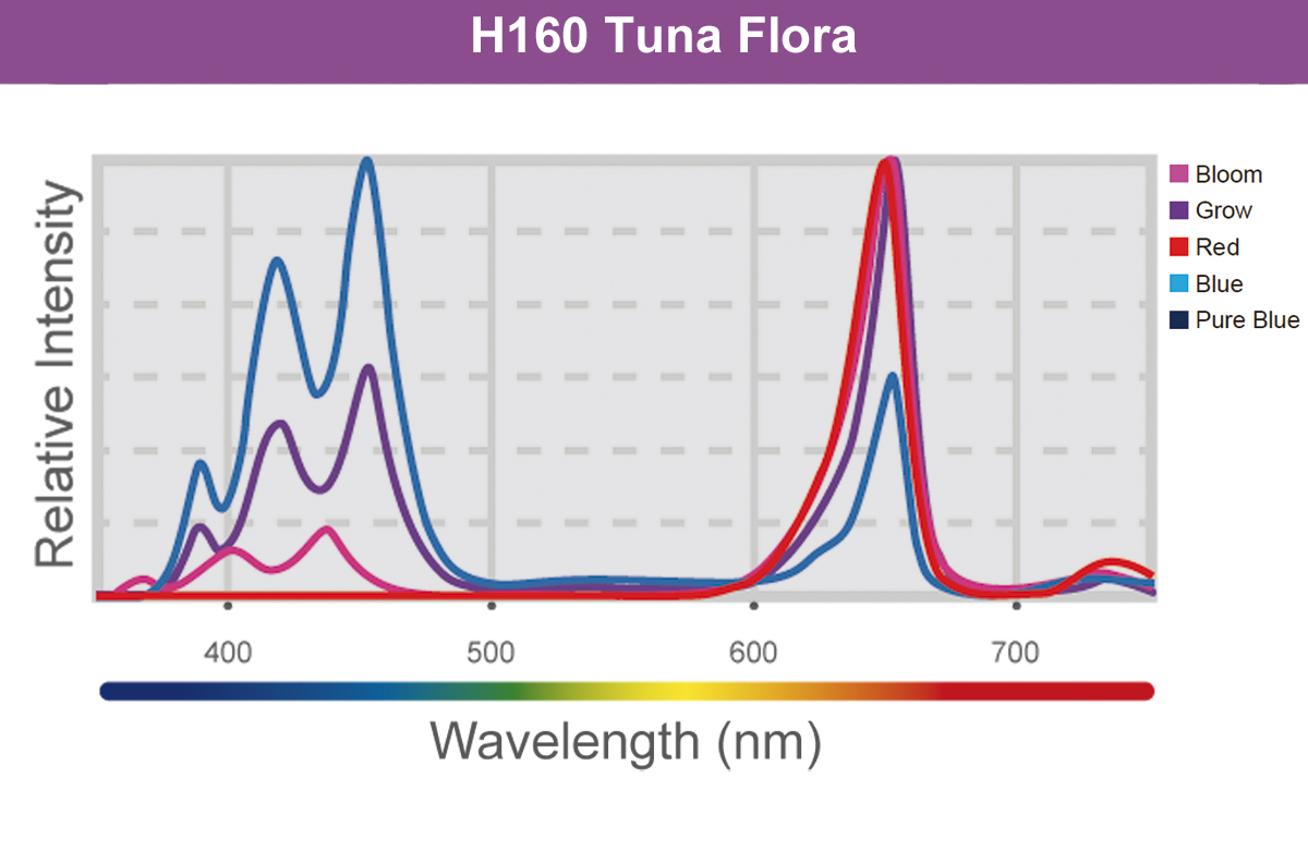 Kessil LED H160 Tuna Flora