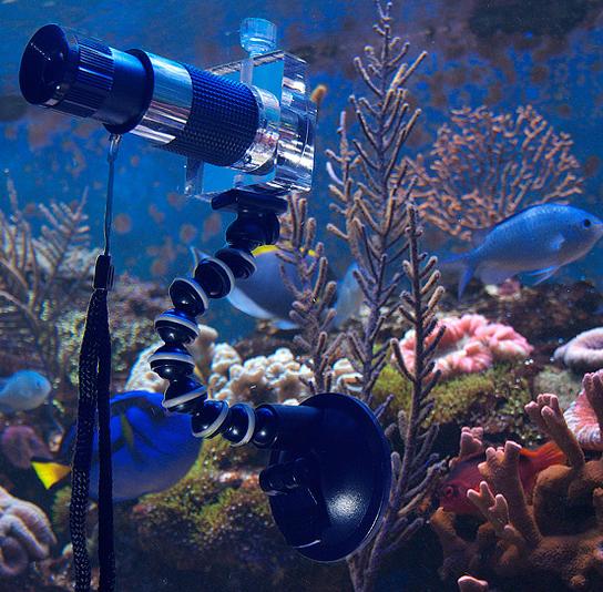 nanoscope d d aquarium solutions