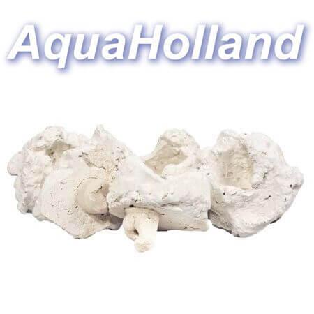 Rifkeramiek Aflegsteen met pin - 5 cm - voor het stekken van koralen per stuk