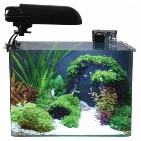 Aquatic Nature Aquarium COCOON 4 (15,5 L) 31x19x26H afbeelding