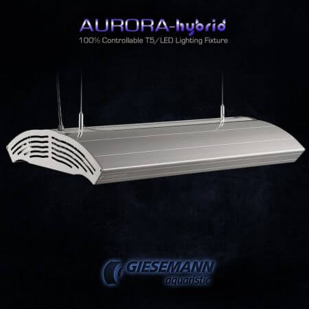Giesemann AURORA HYBRID 4 x 24 Watt + 1 x 85W LED - 600 mm Iridium Metallic