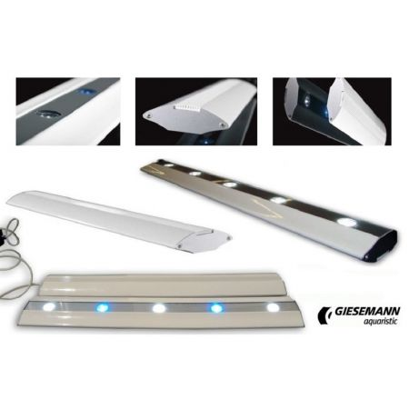 Giesemann QUAZAR-XT 6 x white / 4x blue