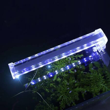 Glasheldere Crystal clip-on LED lamp 4W