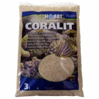 Hobby Coralit, medium
