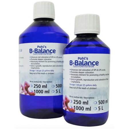 Korallen-Zucht B-Balance