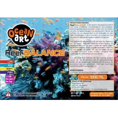 Ocean Art Reef Balance