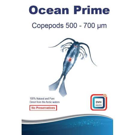 Ocean Prime Copepods