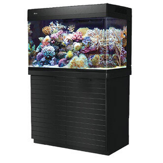 Red Sea Max 250 aquarium + meubel