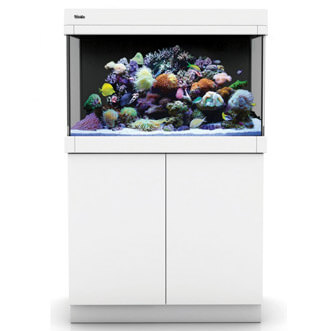 Red Sea Max 250C wit aquarium + meubel