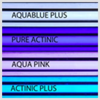 T5 TL - Aquablue+ Giesemann