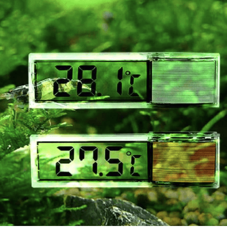Transparante LCD Digitale Thermometer