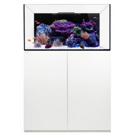Waterbox Platinum Reef 100.3 zwart